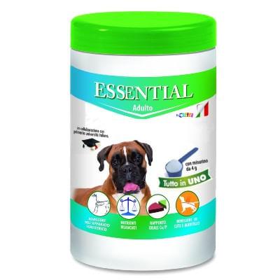 Essential Adult