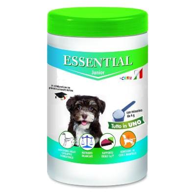 Essential Junior
