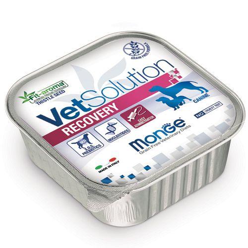 Monge Vetsolution Recovery Vaschetta