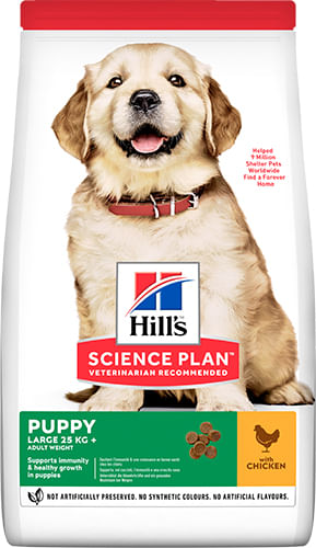 Hill's Science Plan Puppy Large Breed Pollo