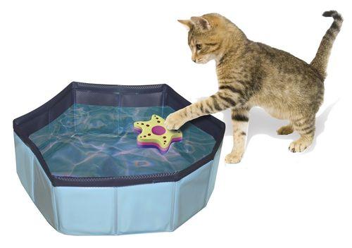 Piscina per Gatti