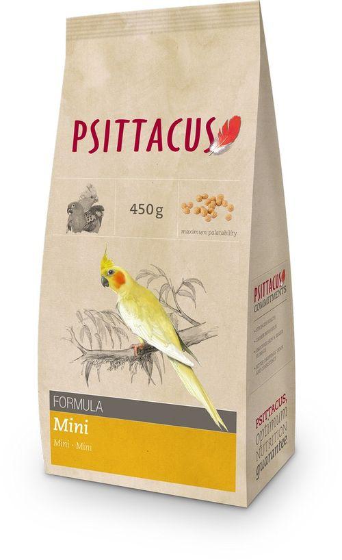 Hunter psittacus pappagalli mantenimento mini