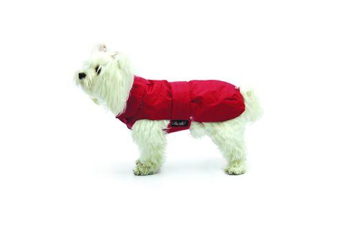 Cappotto Impermeabile con Agnellino Rosso