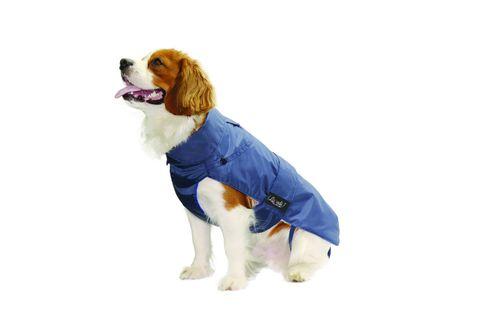 Cappotto Impermeabile con Agnellino Blu