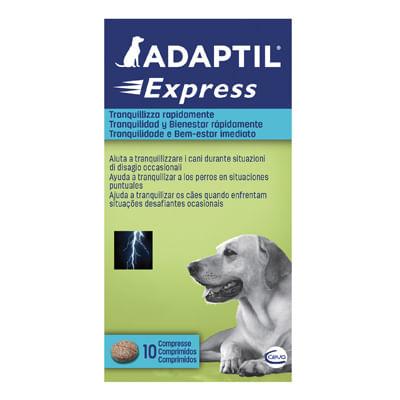 Adaptil Compresse