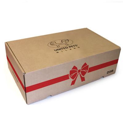 Box Regalo Compleanno Cane Grande