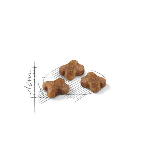royal-canin-kitten-crocchette