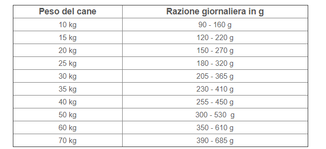 Tabella-n-d-pumpkin-adult-medium-maxi-cinghiale-zucca