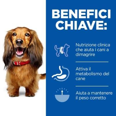hills-prescription-diet-cane-c-d-benefici