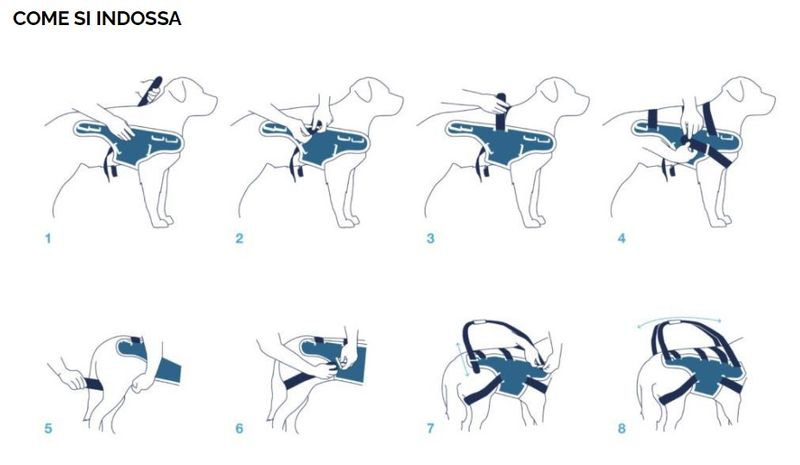 balto-tutore-body-lift-istruzioni
