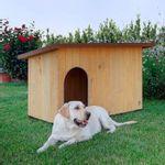 ferplast-baita-cuccia-in-legno-cane-seduto