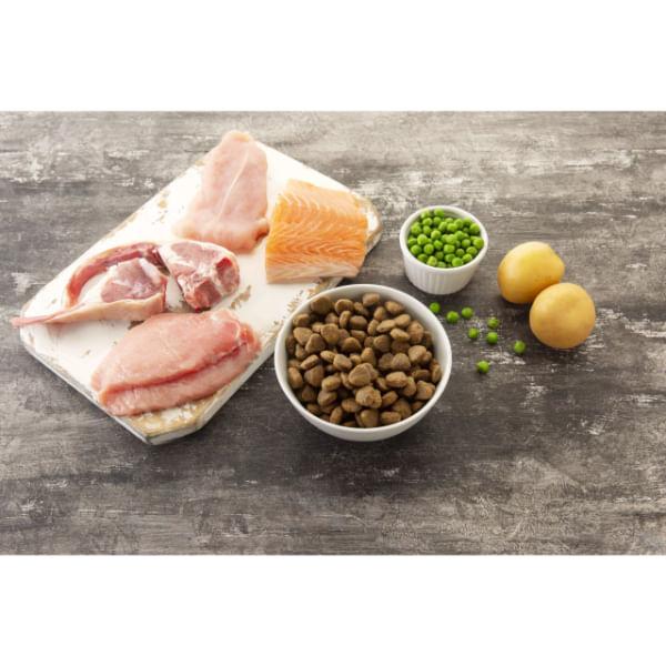 virtus-dog-adult-seven-seas-ingredienti