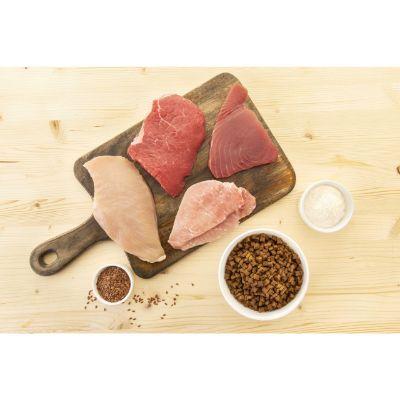 in-the-nature-gatto-tonno-ingredienti